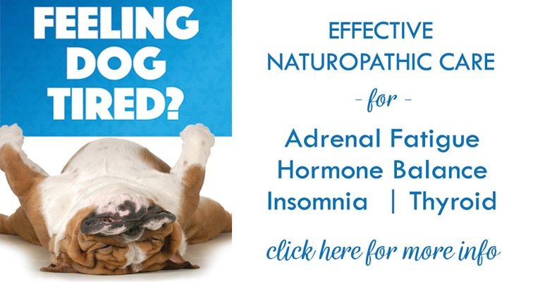 Naturopathic support for fatigue